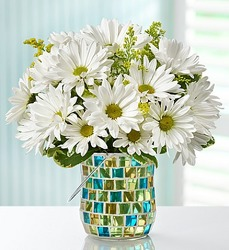 September Special 1 - Save $5 Flower Power, Florist Davenport FL
