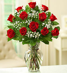 Long Stem Red Roses Flower Power, Florist Davenport FL