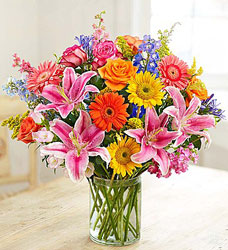 August Special 3 - Save $15 Flower Power, Florist Davenport FL
