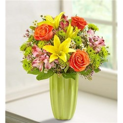 August Special 2 - Save $10 Flower Power, Florist Davenport FL