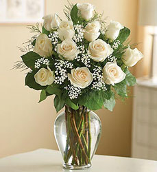 Long Stem White Roses Flower Power, Florist Davenport FL