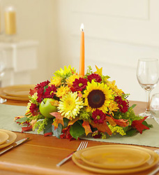 Autumn Celebration Centerpiece Flower Power, Florist Davenport FL