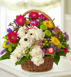 A-Dog-able in a basket! Flower Power, Florist Davenport FL