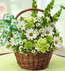 St Patricks Day Flower Basket Flower Power, Florist Davenport FL
