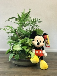 Mickey's Planter Flower Power, Florist Davenport FL