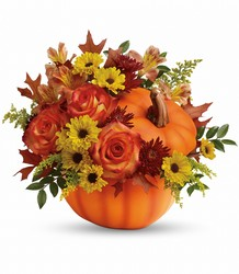 Warm Fall Wishes Bouquet Flower Power, Florist Davenport FL