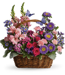 Country Basket Blooms Flower Power, Florist Davenport FL