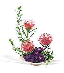 Pin Cushion Protea Bowl Flower Power, Florist Davenport FL